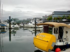 An aggressive marketing plan over the summer has drawn more boats to the Bremerton Marina, which reported an all-time high occupancy rate of 60 percent in August.